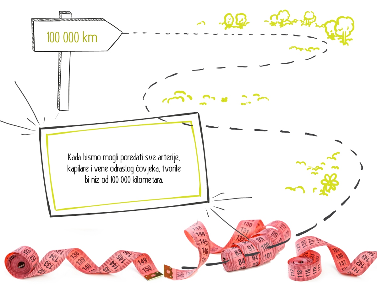 slice_infografika_Grawe-08